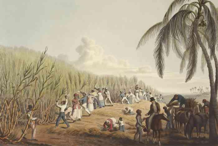 El ferrocarril subterráneo: imagen de esclavitud en las plantaciones