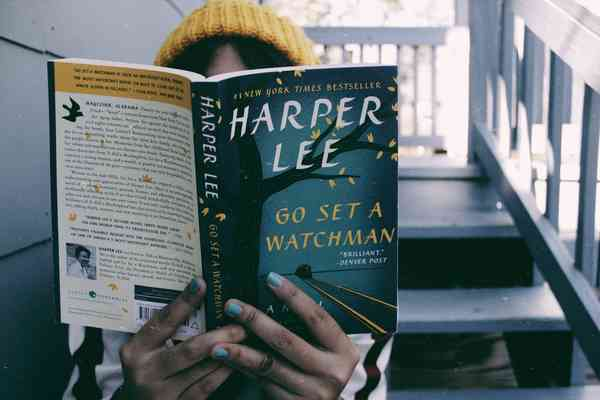Matar a un ruiseñor Harper Lee