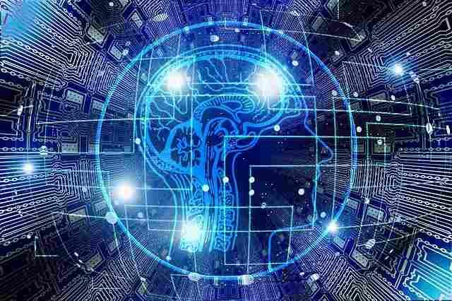 Pórtico Neurociencia y psicología
