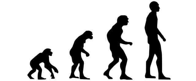 Cómic Sapiens de Yuval Noah Harari