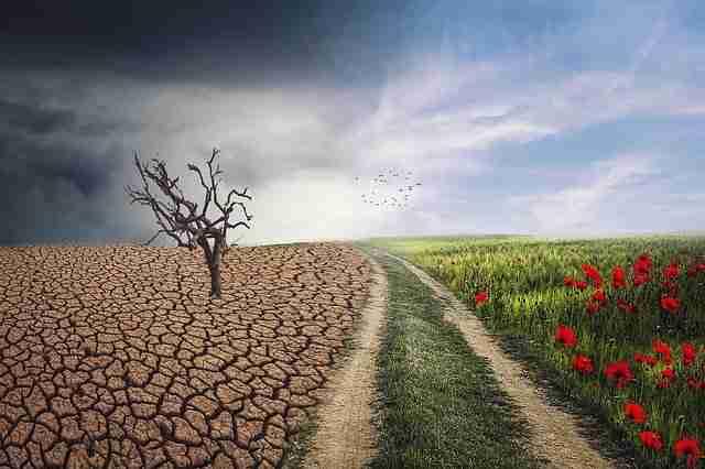 Distopías Cli-Fi y cambio climático
